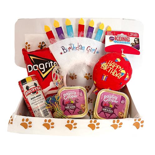 Birthday Box - Dog Girl