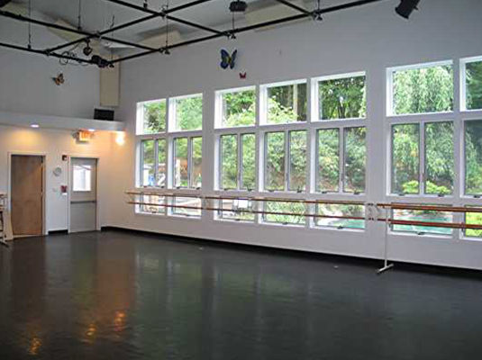 Dance Studio Windows at Enchanted Garden Studio Tw
