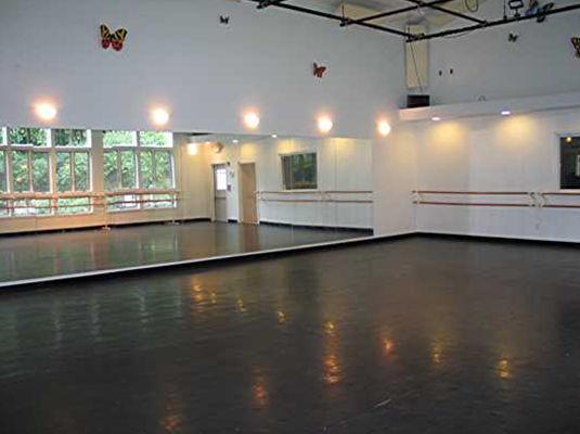 Dance Studio at Enchanted Garden Studio Tw