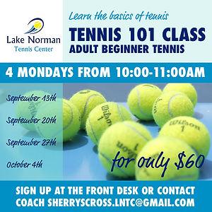 tennis101.jpg