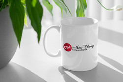 CSE_TWDCF_Logo_Mockup