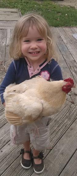 Chicken-girl.jpg