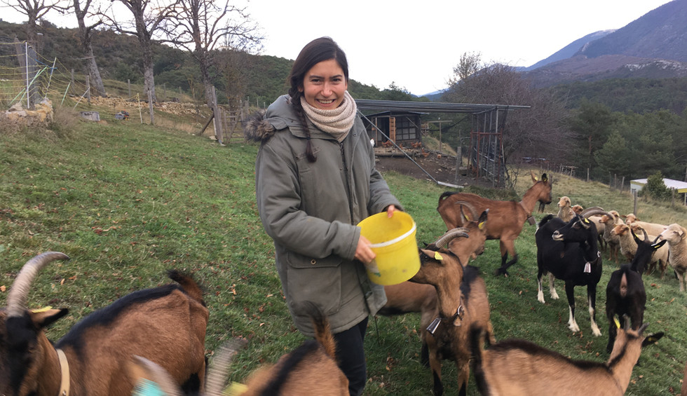 Sabine et goats IMG_4812.JPG