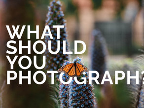 What should you Photograph?