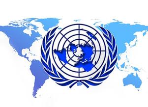 FEDERAL SUPREME COURT INTERNATIONAL OF JUSTICE                 INTERGOVERNMENTAL ORGANIZATION
