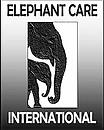 ECI logo new 2.webp