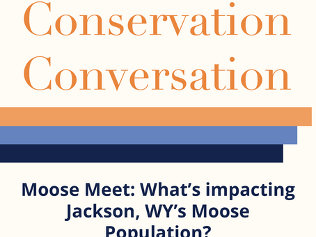 Conservation Conversation: February 25th