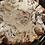 Thumbnail: Cinnamon Rolls