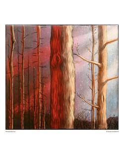 woodscape_no1_8x10