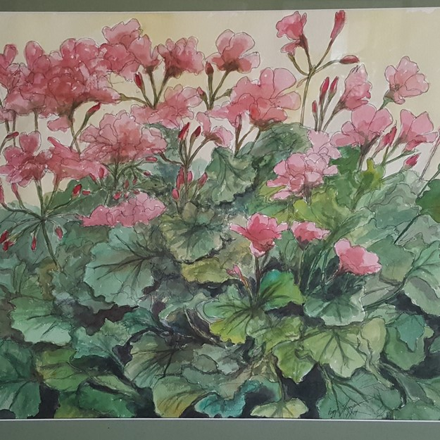 Summer Geraniums 18x24 Watercolor