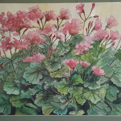 Summer Geraniums 18x24 Watercolor