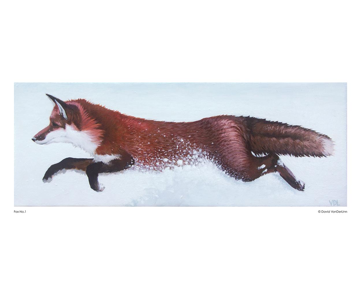 fox_no_01_8x10