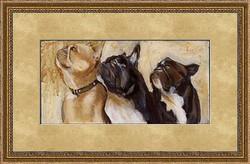French_Bulldogs_1532_full