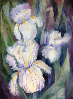 Claremont's Spring Joy - watercolor