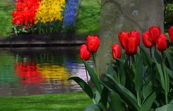 Keukenhof Gardens, Holland -