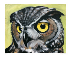 owl_no2_8x10