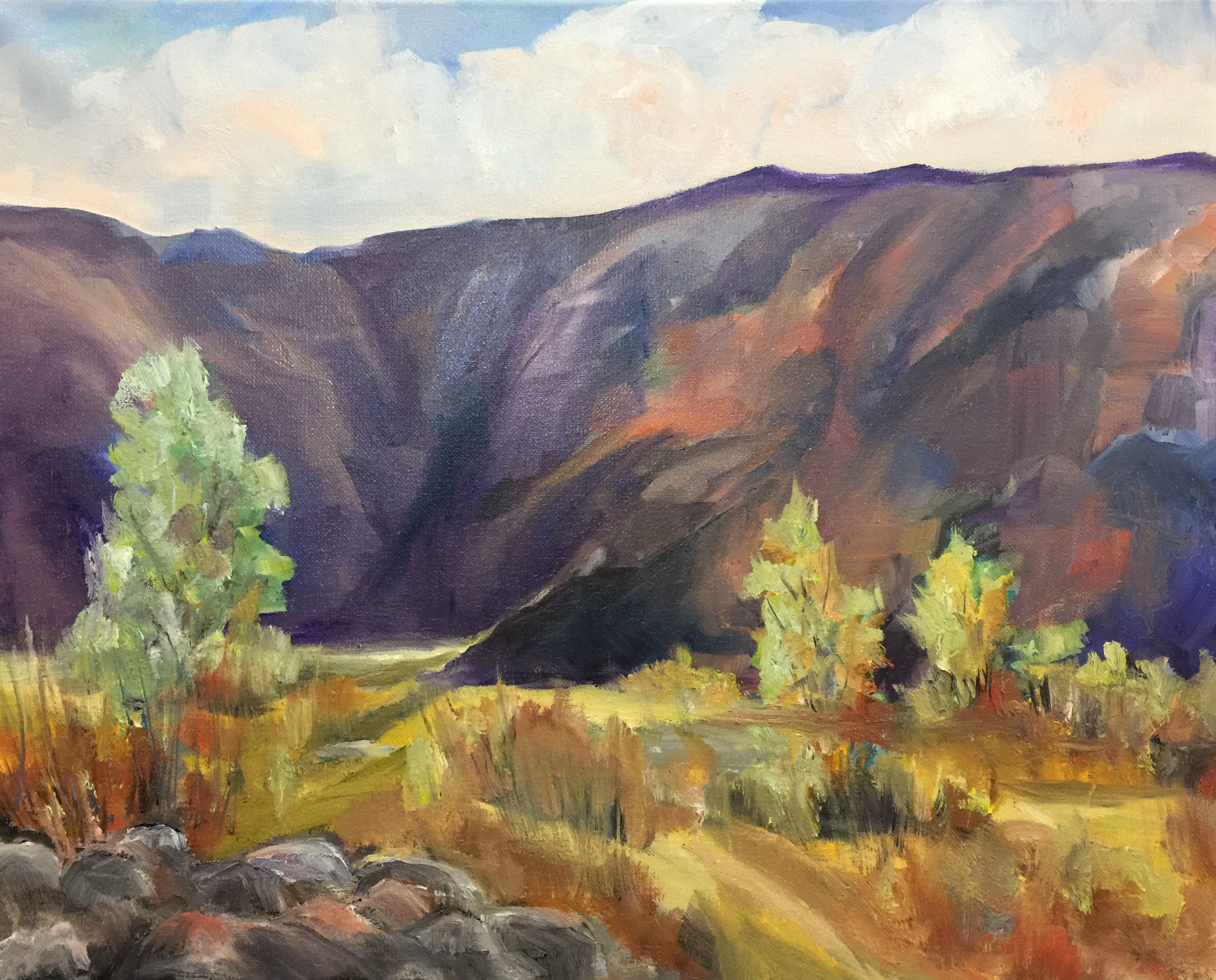 2-1-19  Box Canyon IV  18 x 24