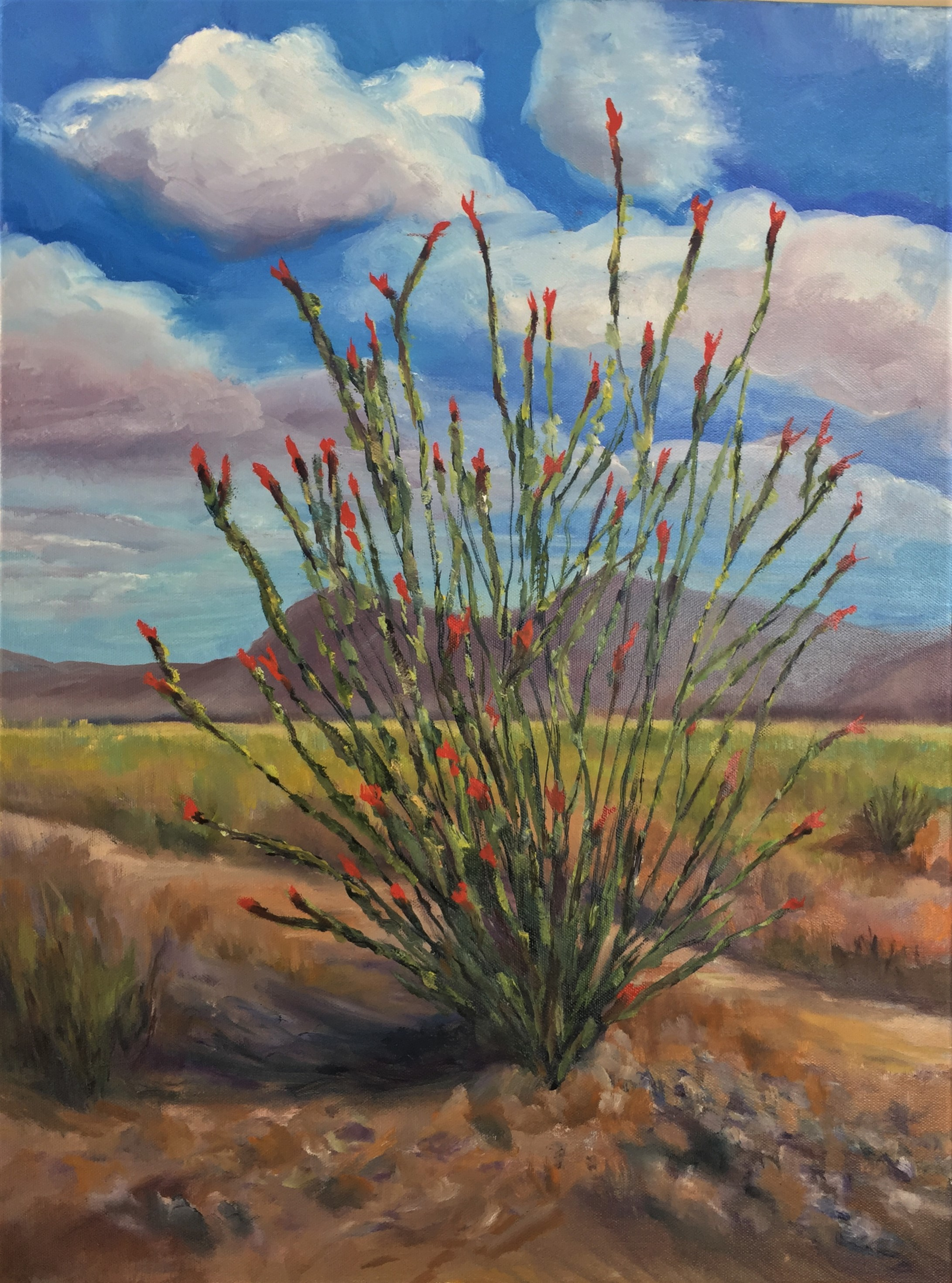 7-7-19  Blooming Ocotillo  18 x 24
