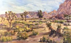1-3-19  Hidden Valley Joshua Tree III  3