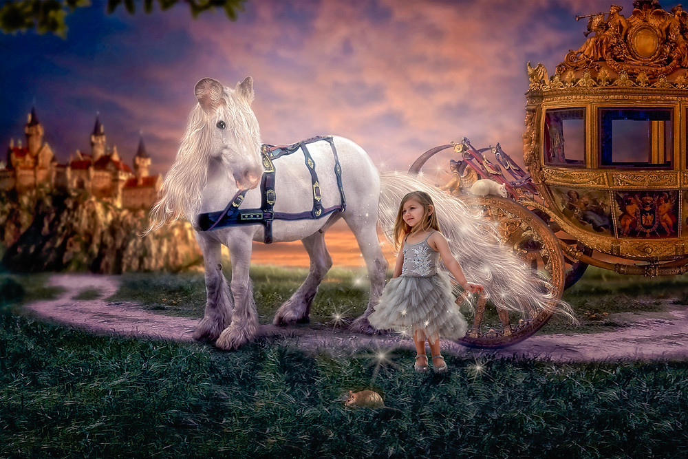 Reverie photography session. Maine kids photographer providing fairytale, princess photoshoots for kids and children