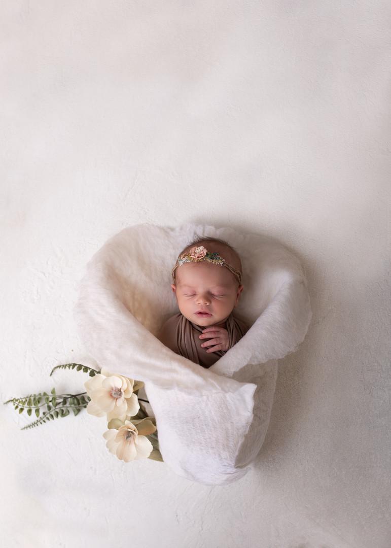 Maine Photographer - Newborn-19.jpg