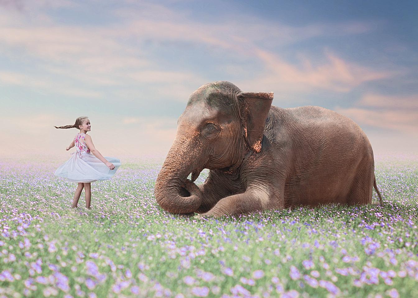 Best Children's Photography