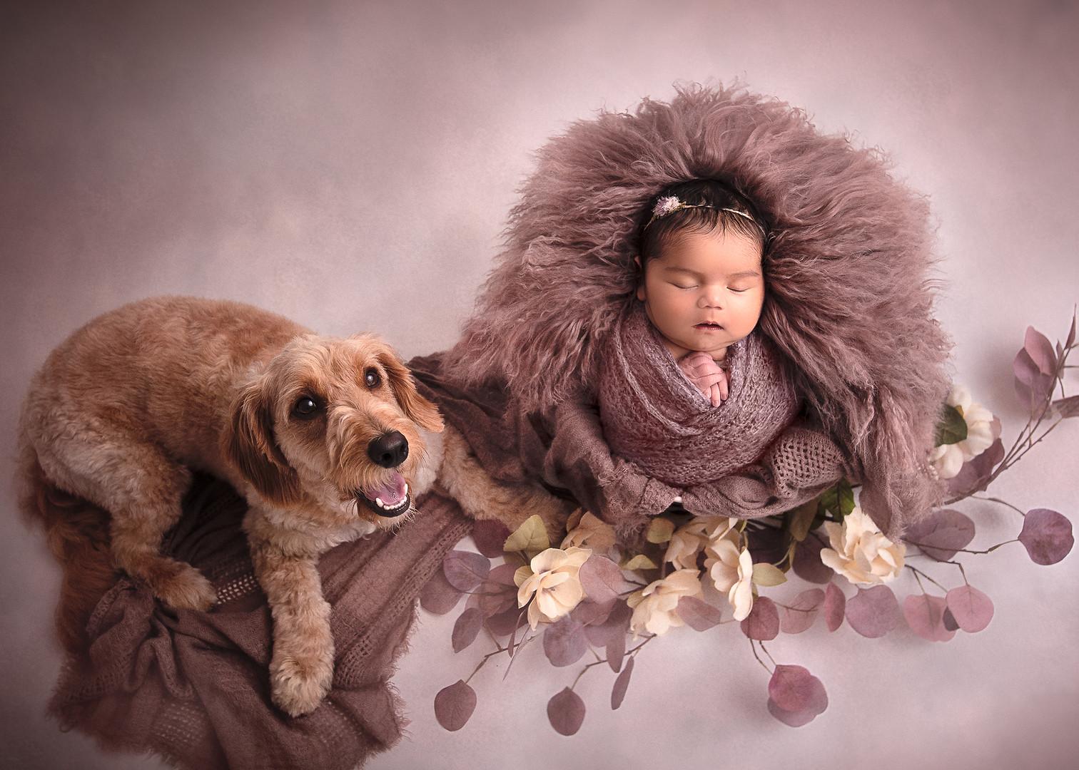 Maine_Newborn_Photographer-40.jpg