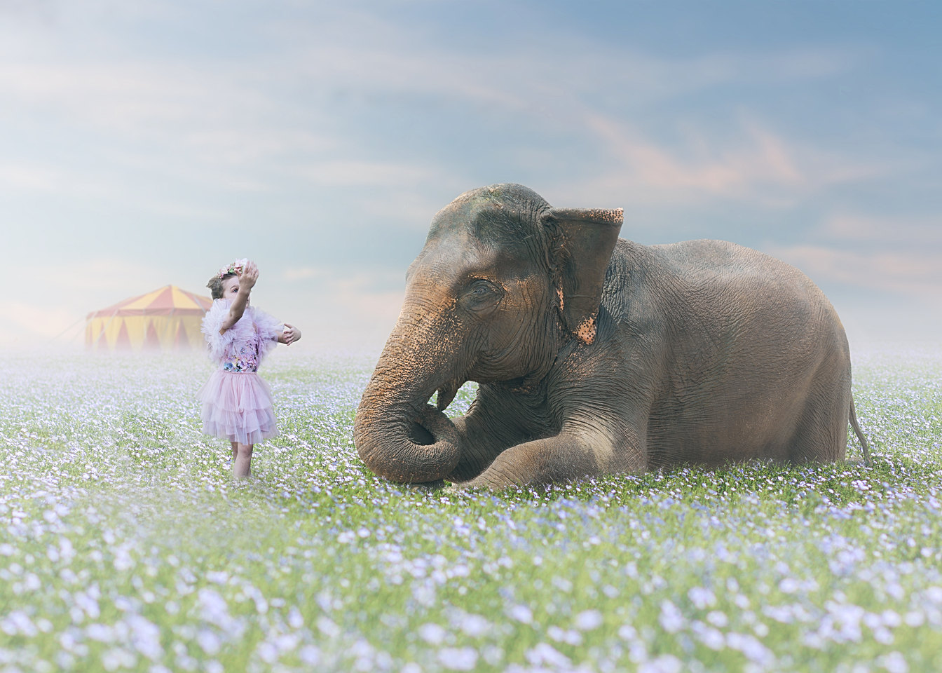 Magical Kids Photography