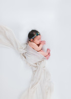 Newborn and Maternity Price Guide | Maine | Elusive Photography
