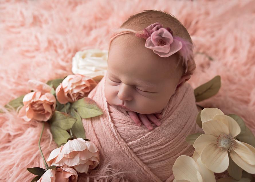 Newborn_Photography_Studio_Boston_and_Po