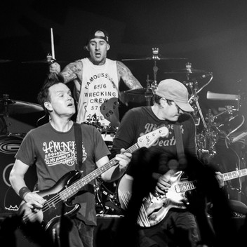Blink-182 Drops Out of Bunbury Music Festival