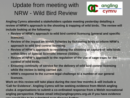 Update on NRW Wild Bird Review