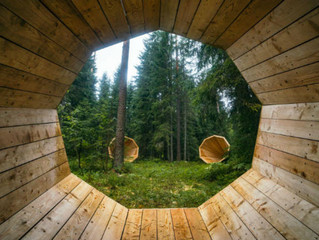 Interior architecture students capture the sound of the Estonian forests