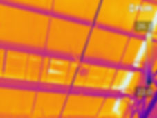 Thermal imaging 2.jpg