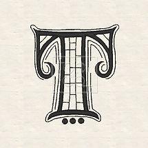 zen-T-3-image.jpg