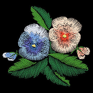 pansies-2-image.jpg