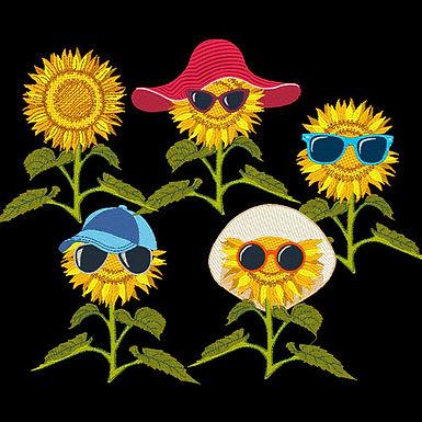 Sunflowers All