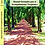 Thumbnail: Manual Orientador para el Acompañante Terapéutico