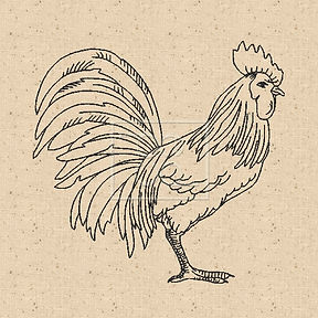 free-rooster-image.jpg