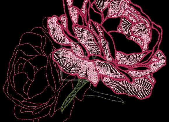 Rose Bloom Design
