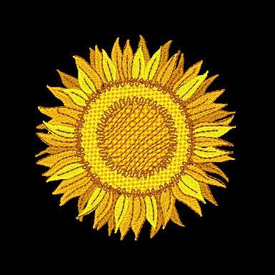 Sunflower 1 - 4x4