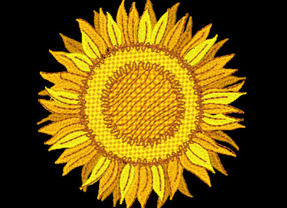 Sunflower 1 - 4x4