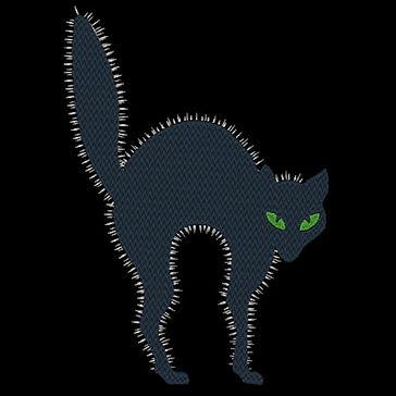 scardey-cat-image.jpg