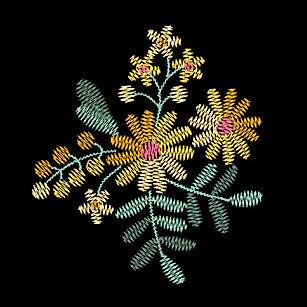daisies-2-image.jpg