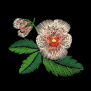 free-pansies-4-image.jpg