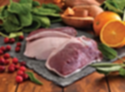 Fresh traditionally sourced farm ingredients, duck, oranges, herbs, cranberries Addiscotts grain free