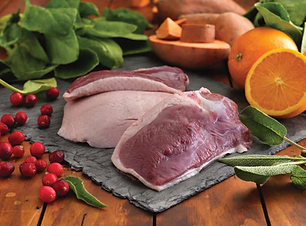 Duck and Orange food grade image.png