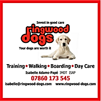 Ringwood dogs ad.png
