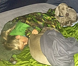 Camping with the Addiscott Dog Food pooches