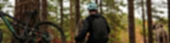 DK forest scene.png